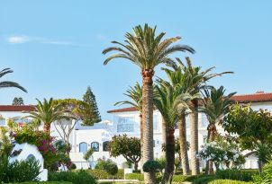 07-palm-gardens-and-landscape-of-grecotel-caramel-resort-in-crete